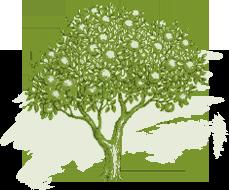 Picto arbre de verger